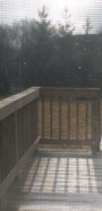 Sun shining on my deck while snow flurries are falling.