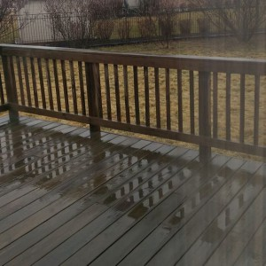 My backyard and part of the deck on a rainy day.