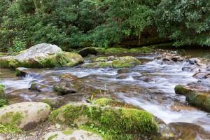 Stream flowing through mossy rocks.
