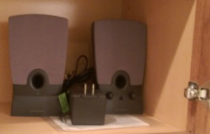 Pair of speakers in a cabinet.