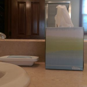 Kleenex tissues in a blue, green, and white box on my bathroom counter.