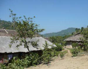 Homes with thatched roofs in a peasant village.