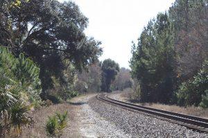 Empty railroad tracks going around a curve.