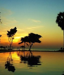 Trees at the shore and golden clouds in Sri Lanka.