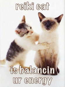 "Cat picture that says ""Reiki cat is balancin ur energy."""