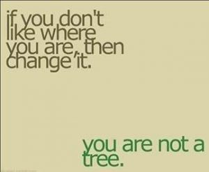 "Word-art that says ""If you don't like where you are, then change it. You are not a tree."""