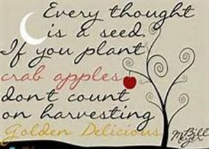 "Word-art that says ""Every thought is a seed. If you plant crab apples, don't count on harvesting Golden Delicious."""