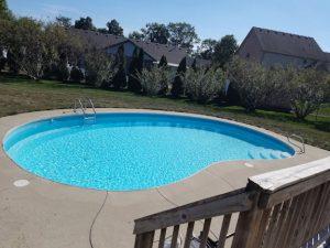 Backyard swimming pool on a sunny day.