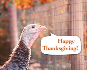 "Word-art of a turkey saying ""Happy Thanksgiving!"""