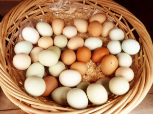 Farm-fresh eggs in a basket.