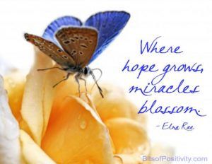 "Word-art that says ""Where hope grows, miracles blossom."" -Edna Rae"