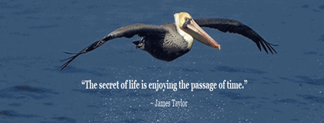 "Word-art that says ""The secret of life is enjoying the passage of time."" -James Taylor"