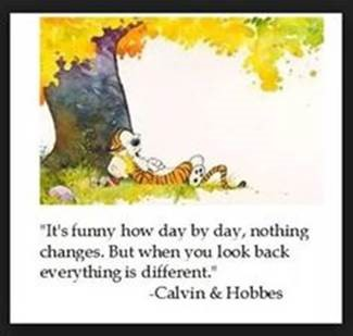 "Word-art showing Calvin and Hobbes that says ""It's funny how day by day, nothing changes. But when you look back everything is different."""