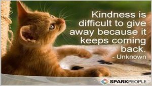 "Cat picture word-art that says ""Kindness is difficult to give away because it keeps coming back."""