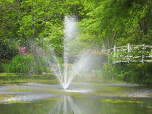 Fountain in a garden pond.
