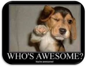 "Word-art with a dog that says ""Who's awesome? You're awesome!"""