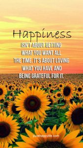 "Word-art that says ""Happiness isn't about getting what you want all the time. It's about loving what you have and being grateful for it."""