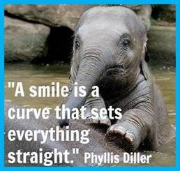 "Word-art that says ""A smile is a curve that sets everything straight."" -Phyllis Diller"