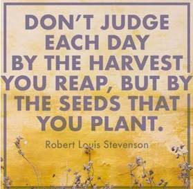 "Word-art that says ""Don't judge each day by the harvest you reap, but by the seeds that you plant."" -Robert Louis Stevenson"