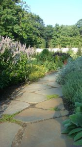 Flagstone path through a perennial garden.