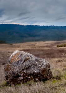 Boulder in a field on a cloudy day.