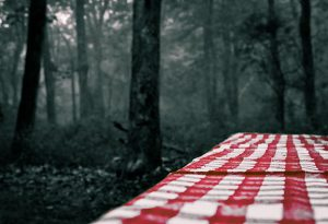 Picnic table with red and white tablecloth on a cloudy day, with dark trees behind it.