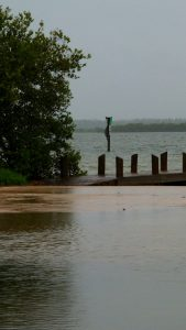 Photo of dock on river with high water.