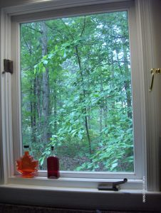 Photo of trees outside a square kitchen window.
