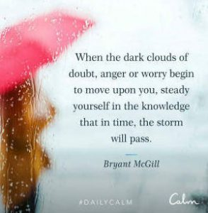 "Word-art that says ""When the dark clouds of doubt, anger or worry begin to move upon you, steady yourself in the knowledge that in time, the storm will pass."" -Bryant McGill"