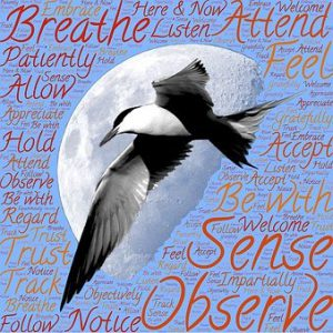 "Word-art with a bird, the moon, and words like ""Observe"" and ""Breathe."""