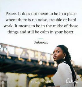 "Word-art that says ""Peace. It does not mean to be in a place where there is no noise, trouble or hard work. It means to be in the midst of these things and still be calm in your heart."""