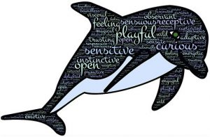 "Word-art with a dolphin and words like ""Playful"" and ""Curious."""