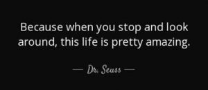 "Word-art that says ""Because when you stop and look around, this life is pretty amazing,"" -Dr. Seuss"