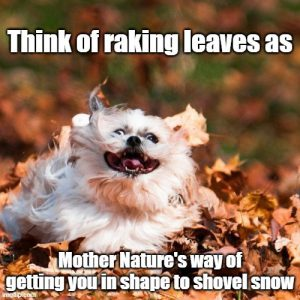 "Word-art that says ""Think of raking leaves as Mother Nature's way of getting you in shape to shovel snow."""